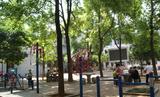 长沙市枫树山养老服务中心